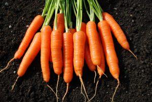 Cà rốt có tác dụng giảm nhăn và trị thâm hiệu quả