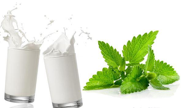 Áp dụng công thức tắm trắng sữa tươi không đường bạc hà đều đặn đều đặn 3-4 lần/tuần sẽ mang lại hiệu quả dưỡng trắng tối ưu nhất