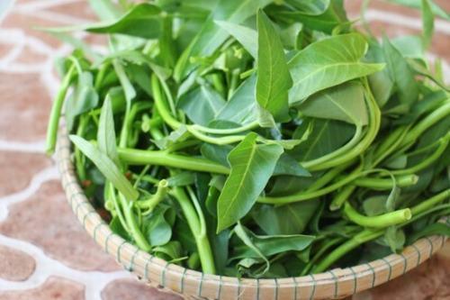 Để tránh để lại sẹo lồi, bạn không nên ăn rau muống sau khi tẩy nốt ruồi.