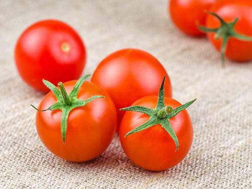 Sử dụng cà chua trị mụn ở lưng là giải pháp được nhiều chị em áp dụng.