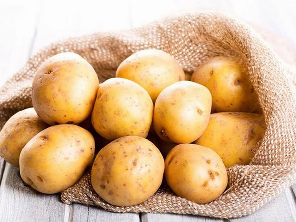 Khoai tây được sử dụng rất nhiều trong các công thức làm trắng da bởi thành phần chứa nhiều dưỡng chất có khả năng loại bỏ melanin, kích thích da trắng sáng hơn.