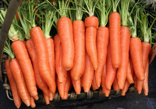Cà rốt là nguyên liệu chữa trị mụn an toàn, tiết kiệm và hiệu quả
