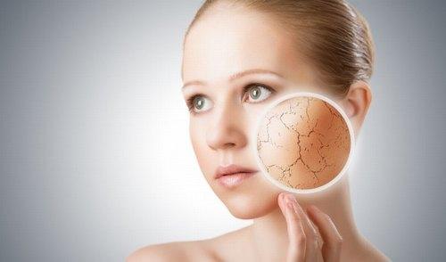 Siêu dưỡng ẩm với tinh chất Xương Rồng Sa Mạc phù hợp với những người có làn da khô.