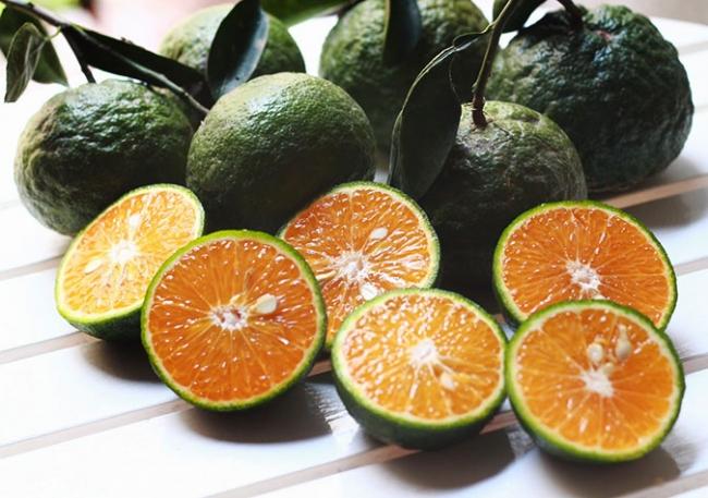 Cách làm trắng da toàn thân tự nhiên với quả cam rất an toàn cho da