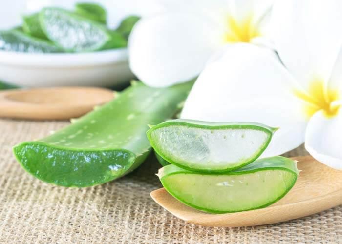 Sử dụng lô hội để biến đổi làn da bị kích thích thành làn da mềm mại khỏe mạnh