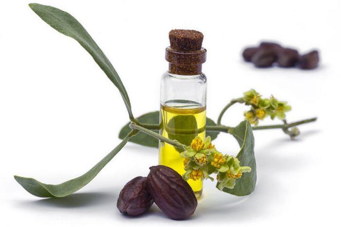 Nếu bạn đang cần sản phẩm dưỡng ẩm thì dầu jojoba là sự lựa chọn thông minh