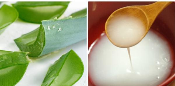 Để trị tàn nhang nhiều người đã chọn công thức từ nước vo gạo + nha đam